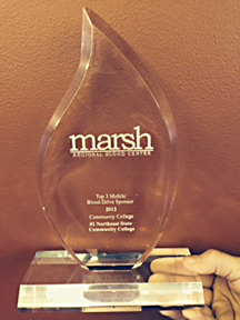 The Marsh Award to Northeast State.