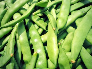 Green Bean drop happens Sept. 26.