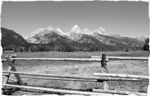 Grand Tetons fenced in