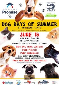 DogDaysofSummer_Poster (Community)